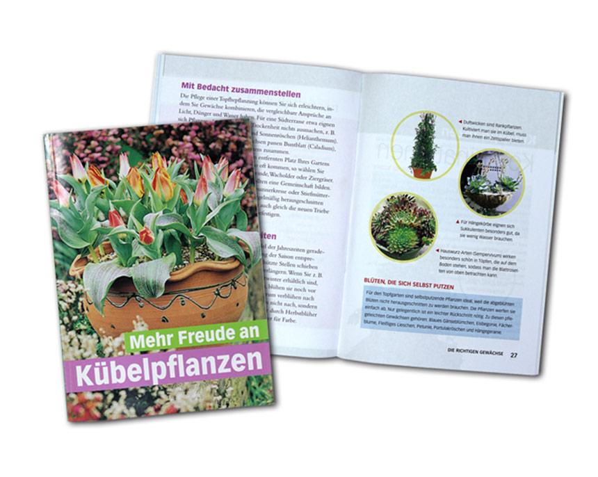 Mehr Freude an Kübelpflanzen